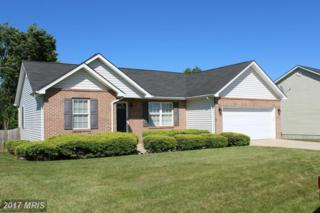 338 Ford Circle, Inwood, WV 25428 (#BE9683430) :: Pearson Smith Realty