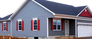 Ives Street, Martinsburg, WV 25405 (#BE9729798) :: Pearson Smith Realty