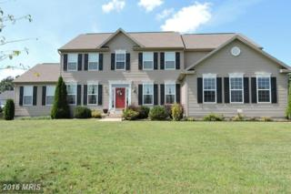 815 Triumphant Way, Falling Waters, WV 25419 (#BE9752126) :: Pearson Smith Realty