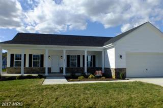 476 Gordon Drive, Hedgesville, WV 25427 (#BE9798609) :: Pearson Smith Realty
