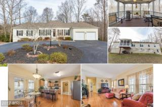3255 Mills Pond Drive, Port Republic, MD 20676 (#CA9869144) :: Pearson Smith Realty