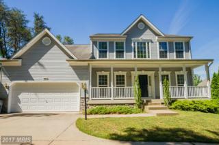 105 Constitution Terrace, Elkton, MD 21921 (#CC9679902) :: LoCoMusings