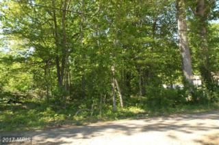 Matthews Road, Bryans Road, MD 20616 (#CH8588500) :: Pearson Smith Realty