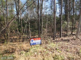 Maryland Point Road, Nanjemoy, MD 20662 (#CH9578067) :: Pearson Smith Realty