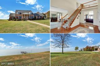 13785 Waverly Point Road, Newburg, MD 20664 (#CH9804763) :: Pearson Smith Realty
