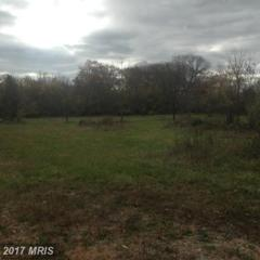 Moose Road, Berryville, VA 22611 (#CL8682398) :: Pearson Smith Realty