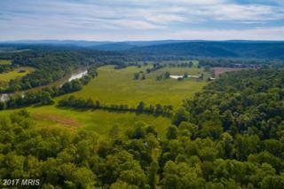 1348 Tilthammer Mill Road N, Boyce, VA 22620 (#CL9729574) :: Pearson Smith Realty