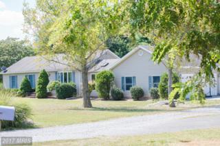 255 Kimble Road, Berryville, VA 22611 (#CL9756505) :: LoCoMusings
