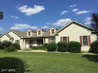 22645 Stevenson Road, Ridgely, MD 21660 (#CM9712951) :: Pearson Smith Realty
