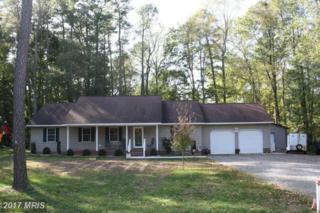 24896 Woods Drive, Denton, MD 21629 (#CM9800788) :: LoCoMusings