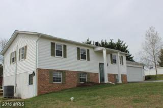 1703 Valley Drive, Westminster, MD 21157 (#CR9546688) :: Pearson Smith Realty
