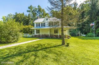 3901 Old West Falls Road, Mount Airy, MD 21771 (#CR9751279) :: LoCoMusings