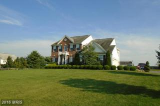 155 Old Bachmans Valley Road, Westminster, MD 21157 (#CR9761845) :: Pearson Smith Realty