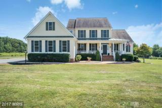 16484 Bradford Road, Culpeper, VA 22701 (#CU9760250) :: Pearson Smith Realty