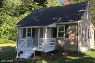 15067 General Ap Hill Avenue, Culpeper, VA 22701 (#CU9773789) :: LoCoMusings
