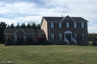 19348 Clair Manor Drive, Culpeper, VA 22701 (#CU9798371) :: LoCoMusings