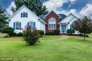 290 Meadow Lane, Bowling Green, VA 22427 (#CV9763353) :: Pearson Smith Realty