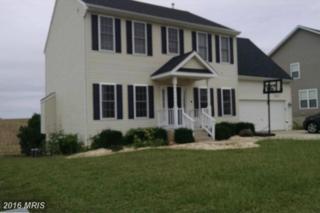 11149 Affirmed Court, Ruther Glen, VA 22546 (#CV9774874) :: Pearson Smith Realty