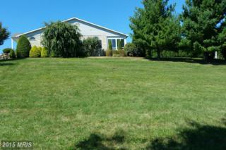 Price Avenue S, Waynesboro, PA 17268 (#FL6835219) :: Pearson Smith Realty
