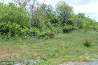 30-LOT # Apple Jack Court, Mercersburg, PA 17236 (#FL8481500) :: LoCoMusings