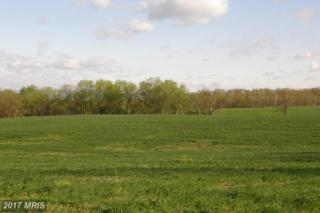 Cool Hollow Road, Greencastle, PA 17225 (#FL8538181) :: Pearson Smith Realty