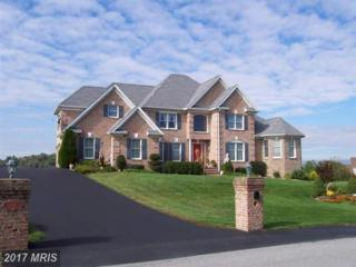 1439 Quilters Court, Chambersburg, PA 17202 (#FL8667004) :: Pearson Smith Realty