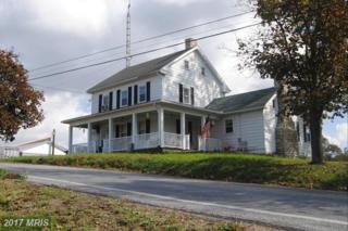 13732 Hollowell Church Road, Greencastle, PA 17225 (#FL8771933) :: Pearson Smith Realty