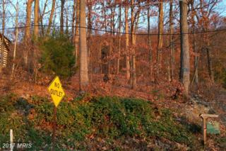 Hess Avenue, Waynesboro, PA 17268 (#FL9527674) :: LoCoMusings