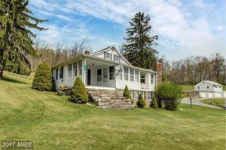 15221 Charmian Road, Blue Ridge Summit, PA 17214 (#FL9633289) :: Pearson Smith Realty