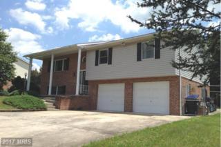 1680 Elizabeth Drive, Chambersburg, PA 17202 (#FL9703643) :: LoCoMusings