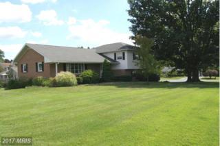 135 Oller Avenue N, Waynesboro, PA 17268 (#FL9749335) :: Pearson Smith Realty
