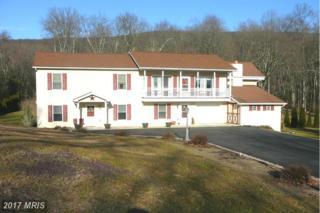 956 Black Gap Road, Fayetteville, PA 17222 (#FL9846295) :: LoCoMusings