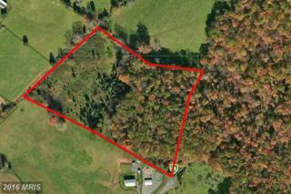 Red Fox Lane, Warrenton, VA 20186 (#FQ9562806) :: Pearson Smith Realty