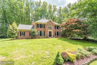 6823 Sandstone Court, Warrenton, VA 20187 (#FQ9670340) :: LoCoMusings