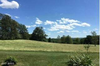 7435 Stoney Hill Lane, The Plains, VA 20198 (#FQ9719621) :: LoCoMusings