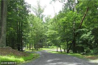 Hawks Nest Lot 4, Marshall, VA 20115 (#FQ9751564) :: Pearson Smith Realty