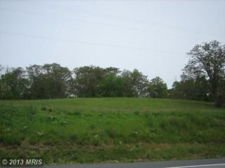 PARCEL 108 Woodsboro Pike, Ladiesburg, MD 21759 (#FR6685446) :: Pearson Smith Realty