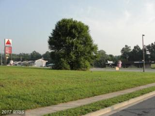 1 Western Drive, Frederick, MD 21702 (#FR8248441) :: Pearson Smith Realty