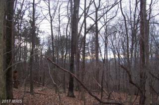 Ridge Road, Frederick, MD 21702 (#FR8693699) :: Pearson Smith Realty