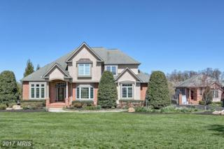 10146 Greensward Link, Ijamsville, MD 21754 (#FR9597652) :: Pearson Smith Realty