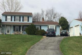 13605 Skyview Terrace Court, Mount Airy, MD 21771 (#FR9601889) :: LoCoMusings