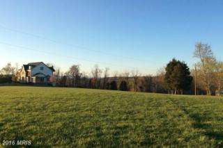 11308 Daysville Road, Frederick, MD 21701 (#FR9618649) :: Pearson Smith Realty