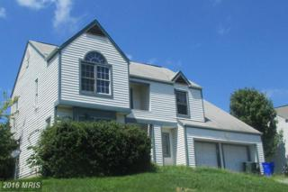 110 Redhaven Court, Thurmont, MD 21788 (#FR9754746) :: Pearson Smith Realty
