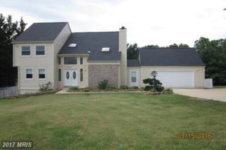 11137 Mountain View Lane, Ijamsville, MD 21754 (#FR9767166) :: Pearson Smith Realty