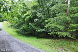 L-111 Blackberry Lane, Gore, VA 22637 (#FV8134401) :: Pearson Smith Realty