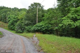 L-104 Logger Drive, Gore, VA 22637 (#FV8134404) :: Pearson Smith Realty