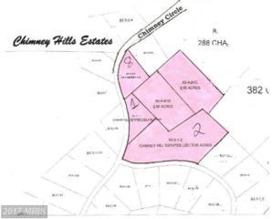 195 Chimney Circle, Middletown, VA 22645 (#FV8771576) :: LoCoMusings