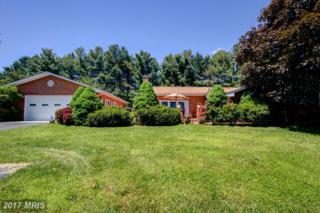 173 Masterpiece Lane, Winchester, VA 22602 (#FV9657106) :: Pearson Smith Realty