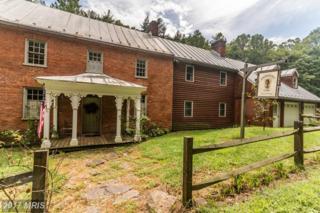 163 Hollow Road, Gore, VA 22637 (#FV9703469) :: Pearson Smith Realty