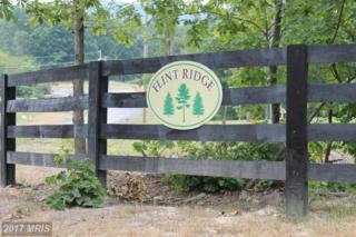 0 Plow Run Lane, Winchester, VA 22602 (#FV9709484) :: LoCoMusings
